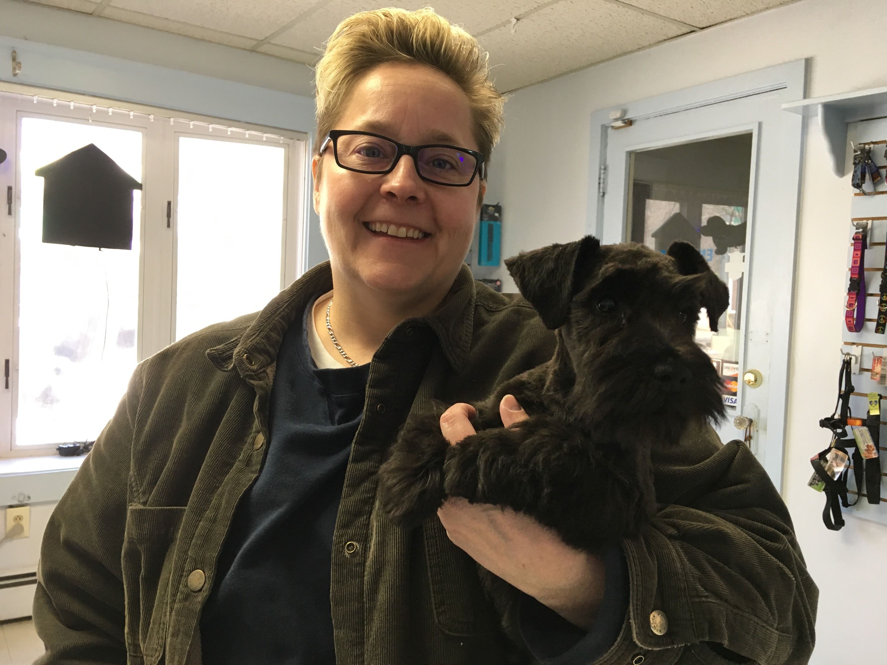 Dog Dayz Grooming Worcester Ma